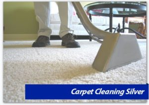 Carpet Cleaning Virginia,MD, DC