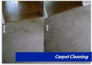 Carpet Cleaning dc, northern virginia, maryland