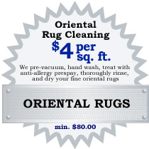 Northern VA DC MD oriental rug cleaning coupon