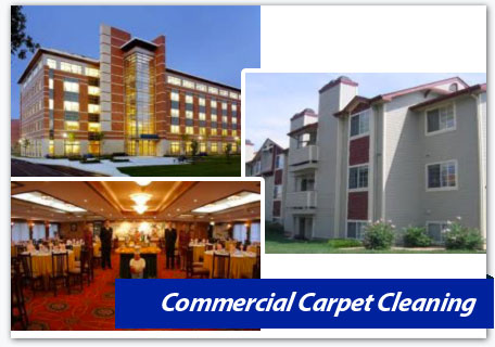 northern virginia, dc, & md,commercial carpet cleaning