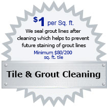 Tile & Grout Cleaning 1 VA DC MD